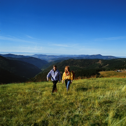 Black Forest Hiking Trail with Active Journeys - escorted adventure travel or self-guided adventure travel tours and holidays