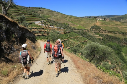 Heart of the Douro Wine Country with Active Journeys - escorted adventure travel or self-guided adventure travel tours and holidays