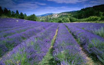 Provence Vaucluse and the Luberon with Active Journeys - escorted adventure travel or self-guided adventure travel tours and holidays