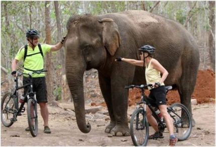 Cycling through Southern Laos with Active Journeys - escorted adventure travel or self-guided adventure travel tours and holidays