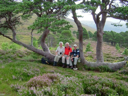 Hiking Cairngorms National Park and Royal Deeside with Active Journeys - escorted adventure travel or self-guided adventure travel tours and holidays