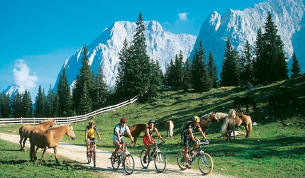 Tours also 330957003370 further P2158145 also Details together with 281254057168. on bicycle gps europe maps